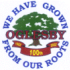 The 2009 City of Oglesby Comprehensive Plan